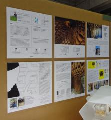 INSECTARIUM installation detail by Christopher Kaltenbach/Kaltenbach lab/actionfindcopypaste, JIDA Next Eco Design exhibition, Tokyo